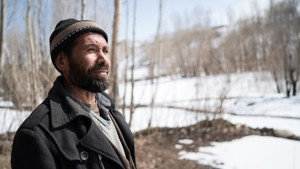 Afghanaid planted apple trees to support Abduls family